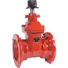 Image of Ductile Iron Gate Valves - AWWA, UL/FM - Resilient Wedge