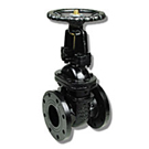 Image of 105F Flanged Cast Iron Gate Valve - OS&Y, Rising Stem