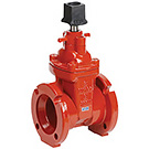 Image of 200MW Mechanical Joint Ductile Iron Gate Valve- AWWA Certified
