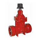 Image of 200RTD Ductile Iron Ring-Tite Gate Valve