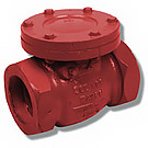 Image of 120S Cast Iron Threaded Check Valve