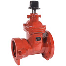 Image of 225FP AWWA C515 Ductile Iron Flanged x Push-On (C900 / DI Pipe) Valve