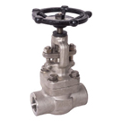 Image of 505FSST Forged Stainless Steel Globe Valve - Threaded