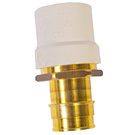 Image of Lead Free CPVC x Pex F1960 Cold Expansion Transition Fitting